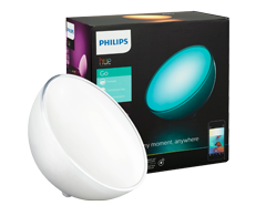 Philips Hue go